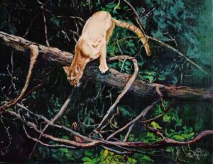 """Final Approach"" Original Oil 16"" X 20"" ""Final Approach""  Wildlife Paintings  Wild Things Art"