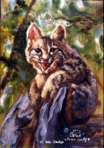 """""""Hangin` Around"""" """"Hangin` Around"""" - Original Sold   Wildlife Paintings  Wild Things Art"""