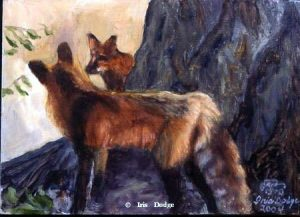 """""""Sam & Sally"""" """"Sam & Sally""""  Wildlife Paintings  Wild Things Art"""