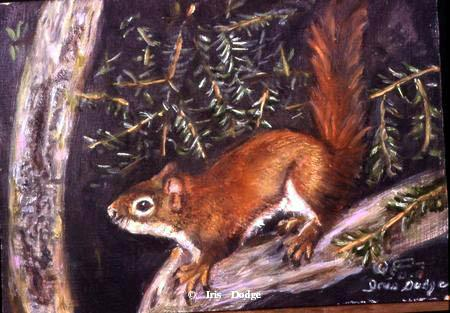 """The Squirrel"" ""The Squirrel"" -  Original Sold  Wildlife Paintings  Wild Things Art"